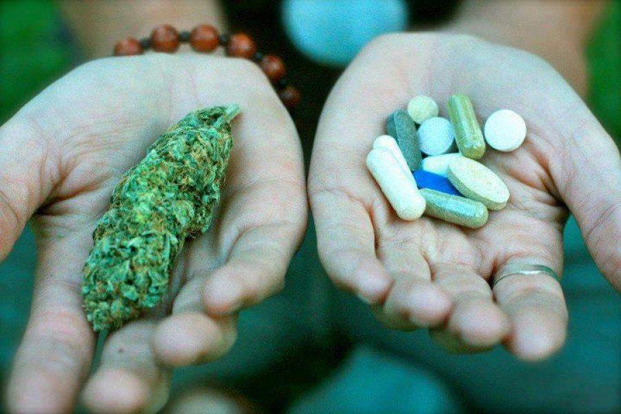 Cannabis terapeutico desde la experiencia