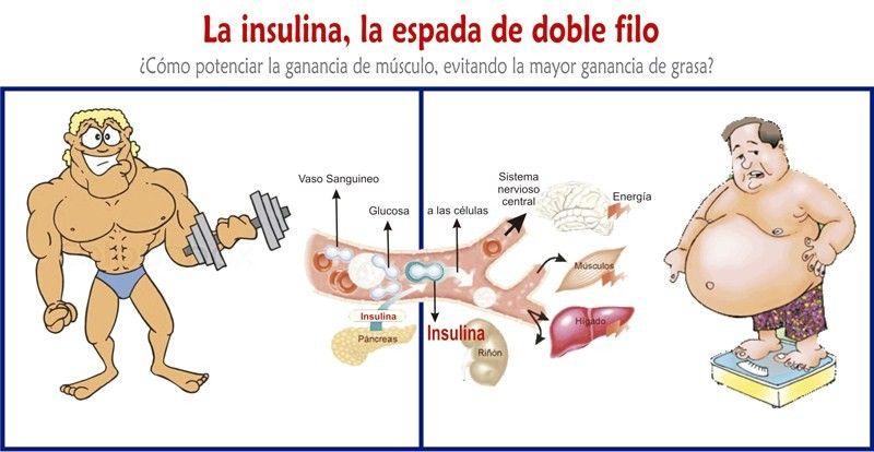 La insulina es el antídoto que te mata poco a poco