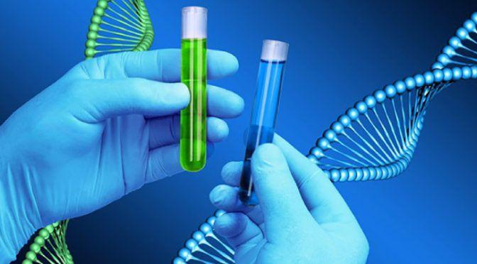 Medir los telomeros y activar la telomerasa aún no está a tu alcance … por ahora