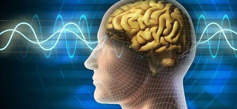 La capacidad cognitiva es recuperable. Te imaginas cómo?