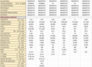 analitica-2